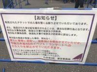 チケット 乃木坂 ライブ